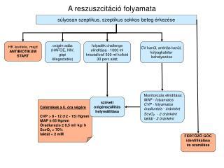A reszuszcitáció folyamata