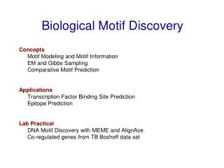 Biological Motif Discovery