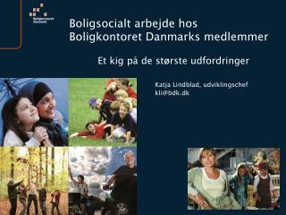 Boligsocialt arbejde hos Boligkontoret Danmarks medlemmer Et kig på de største udfordringer
