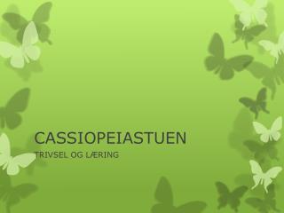 CASSIOPEIASTUEN