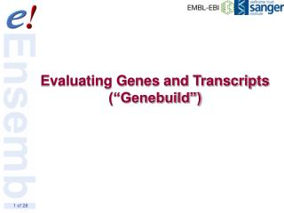 "Evaluating Genes and Transcripts (""Genebuild"")"