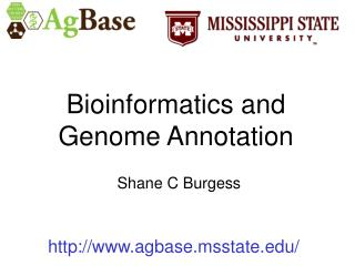 Bioinformatics and Genome Annotation