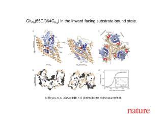 N Reyes  et al. Nature 000 , 1-6 (2009) doi:10.1038/nature08616