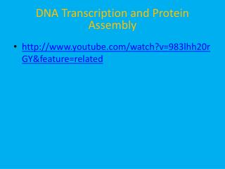 DNA Transcription and Protein Assembly