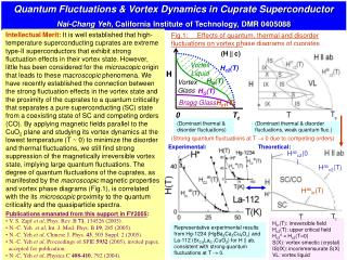 Quantum Fluctuations & Vortex Dynamics in Cuprate Superconductor