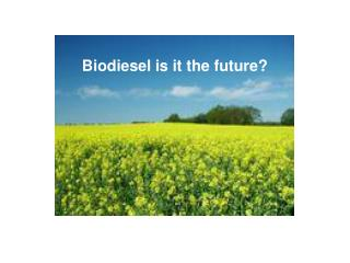 Biodiesel is it the future?