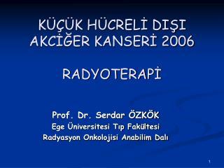 KÜÇÜK HÜCRELİ DIŞI AKCİĞER KANSERİ 2006 RADYOTERAPİ