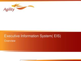 Executive Information System( EIS)