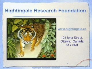 nightingale 121 Iona Street, Ottawa,  Canada K1Y 3M1