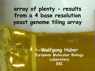 array of plenty - results from a 4 base resolution yeast genome tiling array