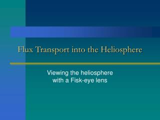 Flux Transport into the Heliosphere