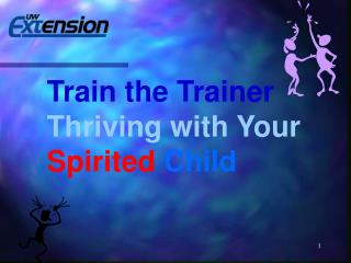 Train the Trainer Thriving with Your Spirited Child