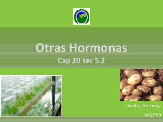 Otras Hormonas Cap  20  sec  5.2