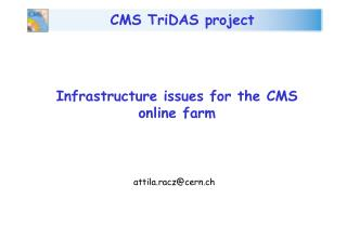 Infrastructure issues for the CMS online farm