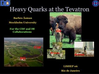 Heavy Quarks at the Tevatron