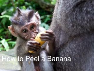 How To Peel a Banana