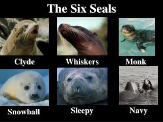 The Six Seals