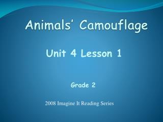 Animals  Camouflage