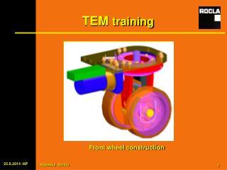 TEM  training