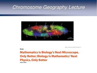 Chromosome Geography Lecture