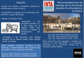 Recomendaciones de  manejo de la hacienda  durante la emergencia  climática