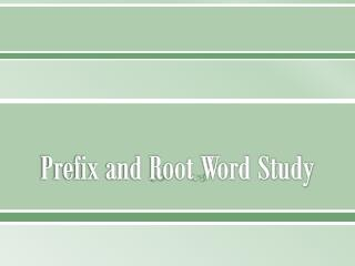 Prefix and Root Word Study