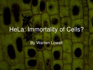 HeLa: Immortality of Cells?