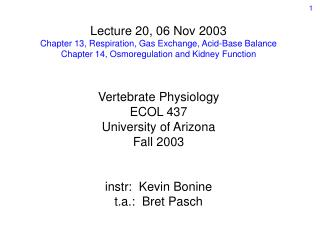 Lecture 20, 06 Nov 2003 Chapter 13, Respiration, Gas Exchange, Acid-Base Balance
