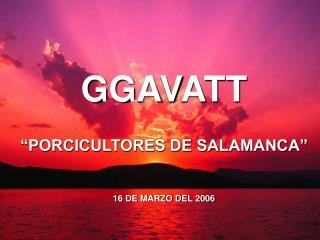 """GGAVATT """"PORCICULTORES DE SALAMANCA"""" 16 DE MARZO DEL 2006"""
