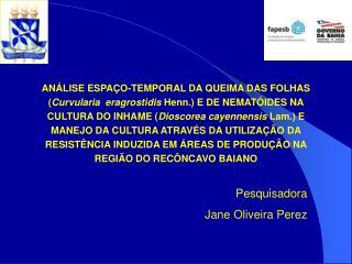 Pesquisadora Jane Oliveira Perez