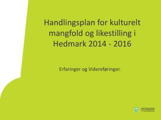 Handlingsplan for kulturelt mangfold og likestilling i Hedmark 2014 - 2016