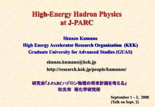 High-Energy Hadron Physics at J-PARC