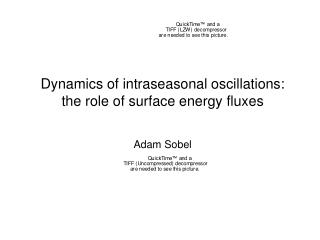Dynamics of intraseasonal oscillations: the role of surface energy fluxes