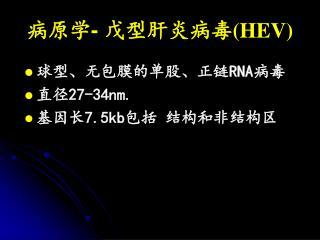 病原学 -  戊型肝炎病毒 (HEV)