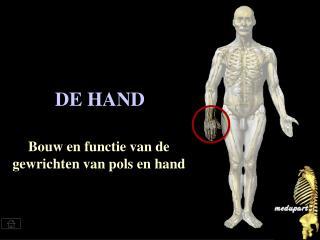 DE HAND