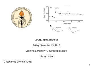 Bi/CNS 150 Lecture 21       Friday November 15, 2012 Learning & Memory 1.  Synaptic plasticity
