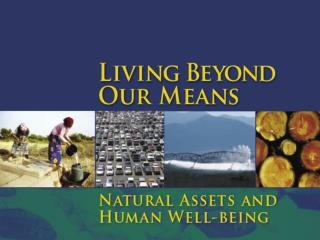 The Millennium Ecosystem Assessment (MA)