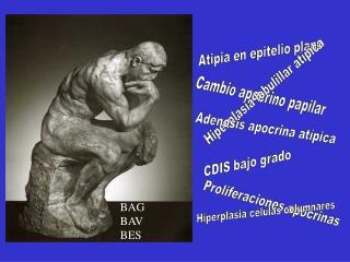 BAG BAV BES