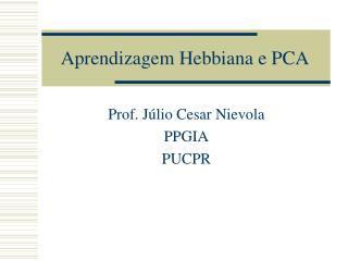 Aprendizagem Hebbiana e PCA