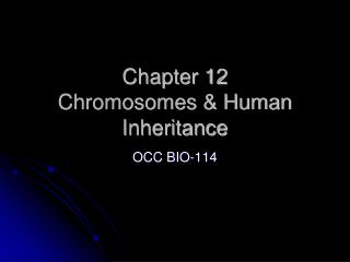Chapter 12 Chromosomes & Human Inheritance