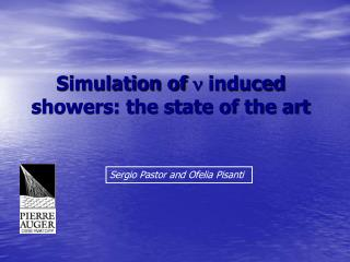 Simulation of   induced showers: the state of the art