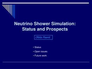 Neutrino  Shower  Simulation: Status and Prospects