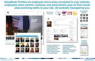 SalesBook 2013