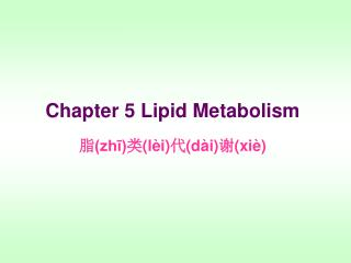 Chapter 5 Lipid Metabolism ? (zh?) ? (l�i) ? (d�i) ? (xi�)