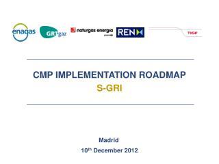 CMP  IMPLEMENTATION ROADMAP S-GRI