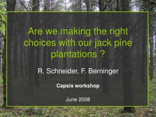 Are we making the right choices with our jack pine plantations ?