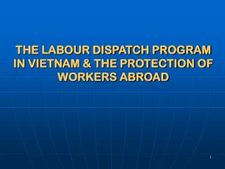 THE LABOUR DISPATCH PROGRAM IN VIETNAM & THE PROTECTION OF WORKERS ABROAD