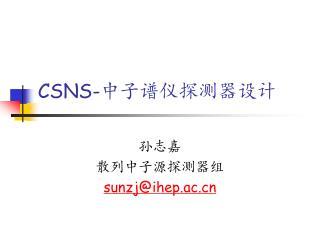 CSNS- 中子谱仪探测器设计