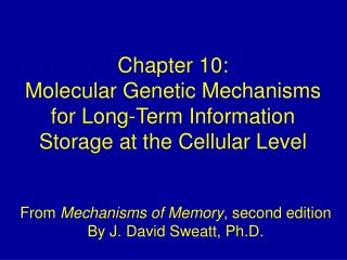 Chapter 10: Molecular Genetic Mechanisms for Long-Term Information Storage at the Cellular Level