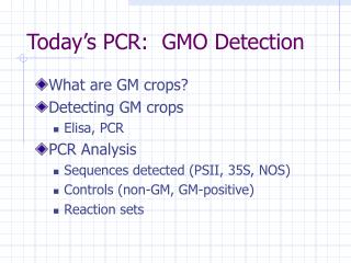 Today s PCR:  GMO Detection